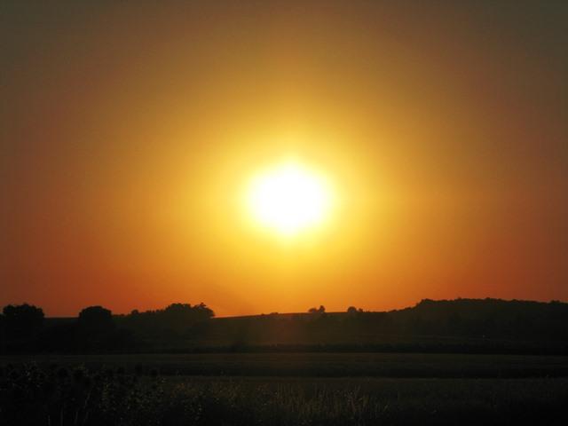Sonnenuntergang im Marchfeld 1