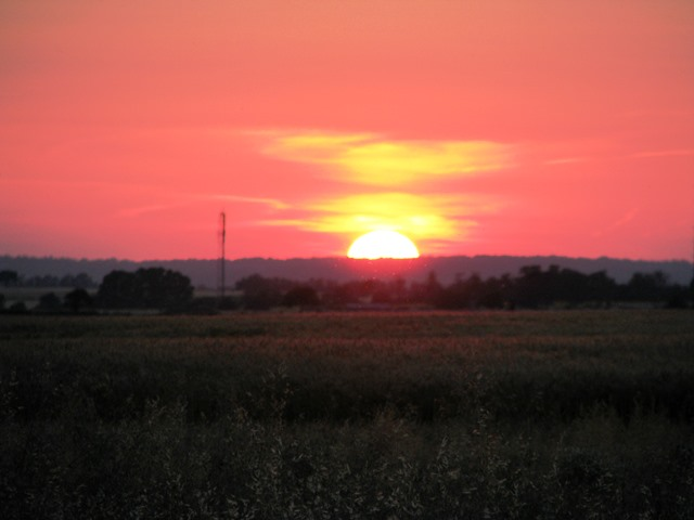 Sonnenuntergang im Marchfeld 3