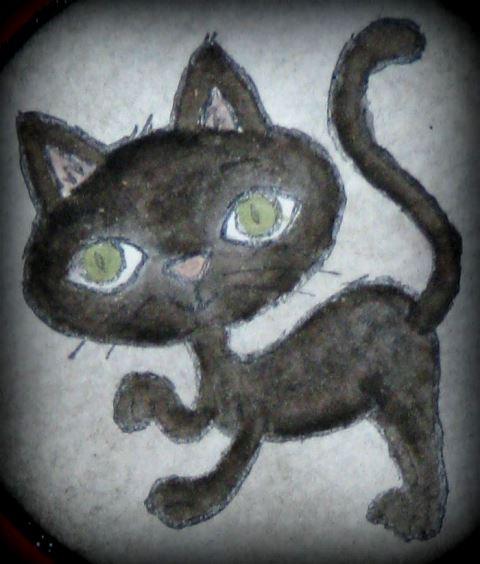 Schwarze Katze von rechts 2