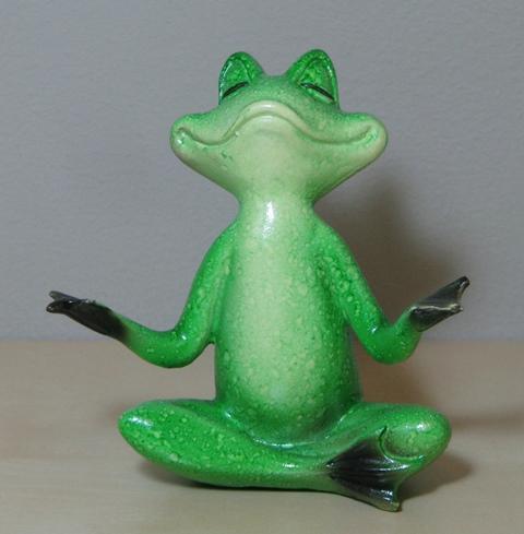 Frosch Geb.