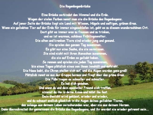 Text Regenbogenbrücke