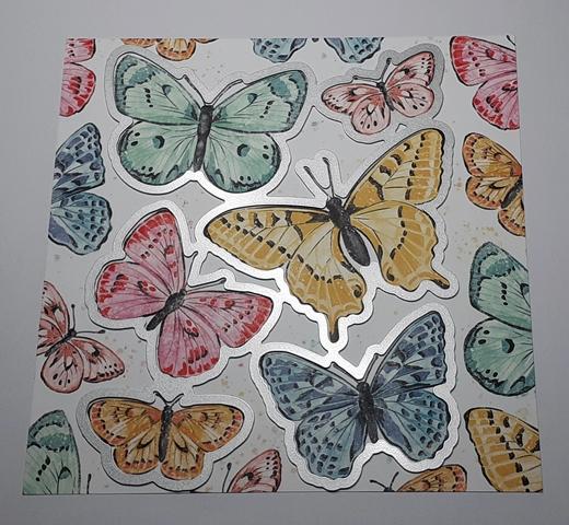 DP Schmetterlingsschmuck