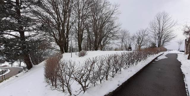 Basilika Schnee